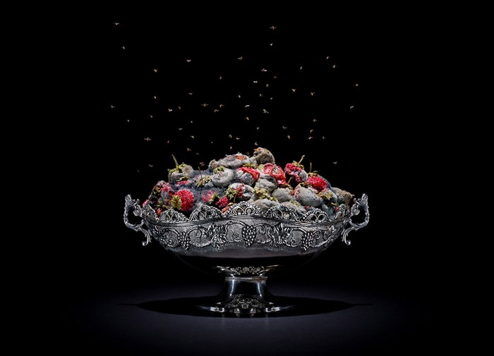 Rotting Food – гнилые продукты от Клауса Пихлера (Klaus Pichler)
