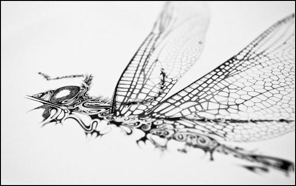 Airborne - чернильные летуны от Si Scott Studio