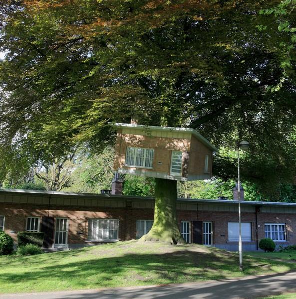 Vogelenzangpark 17b – домище, а не домик на дереве