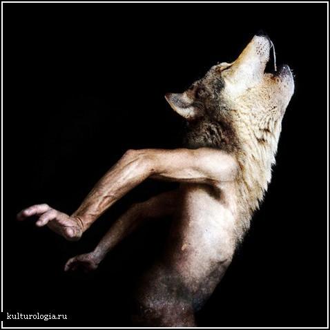 картинки с головами животных: