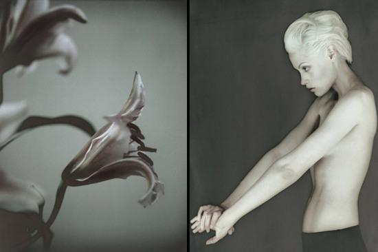 Откровенность, глубина и эротизм: фотографии Carsten Witte
