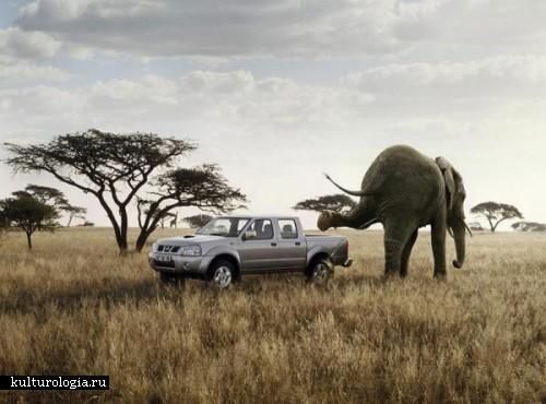 Сумасшедший и смешной фотошоп от Christophe Hue
