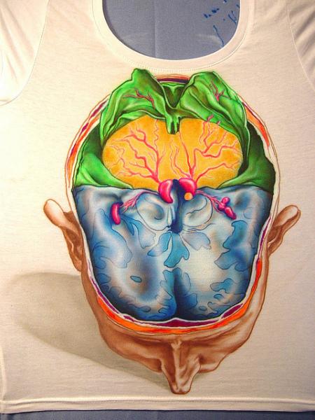 Мозги с секретом от Kerry D'Noit