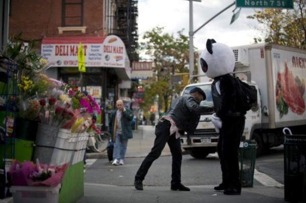 """Акция месяца: Панда """"Пни меня"""