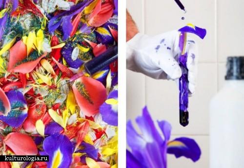 Цветочный рай от Simon Wald-Ladowski
