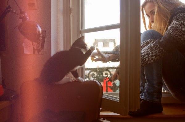 Жизнь как чудо: просто играть с котом - это уже счастье