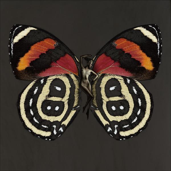 Каков он, поцелуй бабочки?