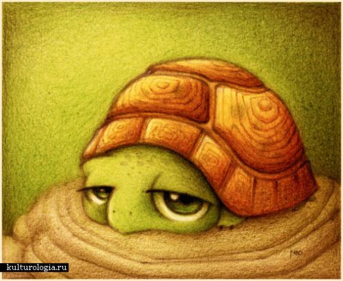 Зверушки от faboarts: Черепаха, черепаха, животные, мультяшный.