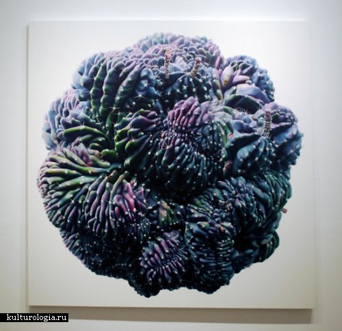 Абстракции из кактусов и пейзажи корейца Kwang-ho Lee