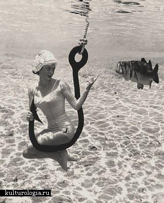 Подводный мир глазами Bruce Mozert.