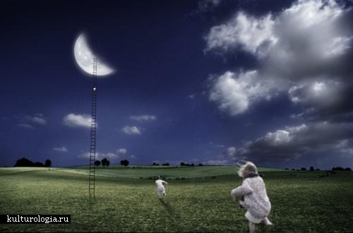 Свет от луны Al Magnus