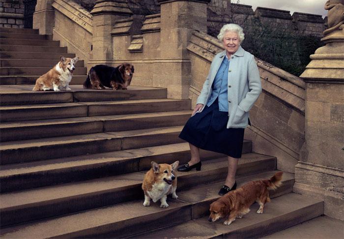 Елизавета II и её корги. / Фото: people.com