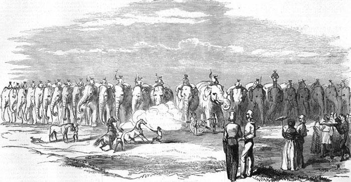Британские войска времен Второй Англо-Бирманской Войны 1852 года.
