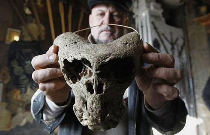 Обладатели черепов похожи ни на одно известное человеку существо.