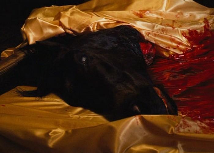 Голова лошади в постели была настоящей.