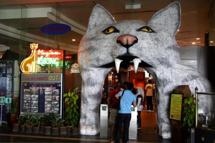 Музей кошек в Кучинге и другие знаковые кошачьи места.