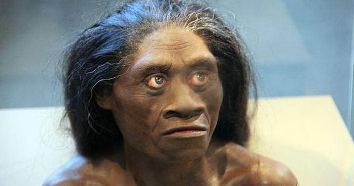 Женщина, жившая на острове Флорес 18 000 лет назад.