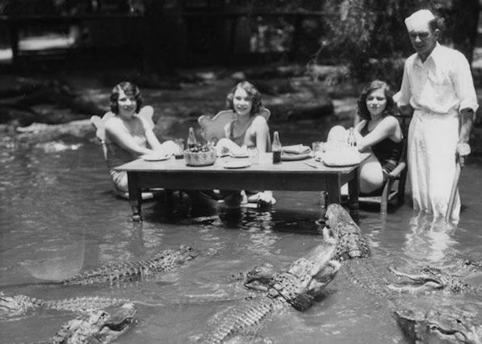 Официант успевает кормить дам и аллигаторов.