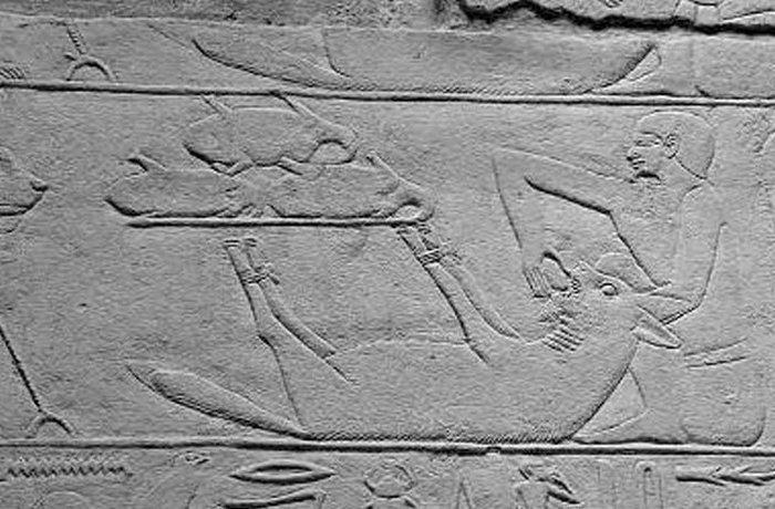 Древний Египет: домашнее животное - гиена.
