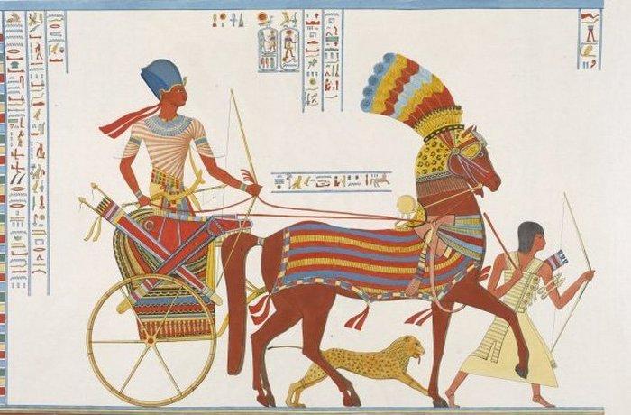 Древний Египет: охота с гепардами.