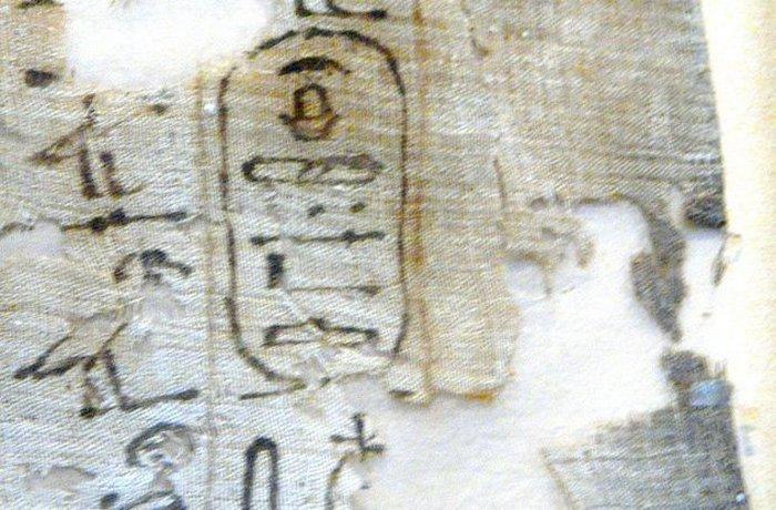 Древний Египет: война из-за любви к гиппопотамам.
