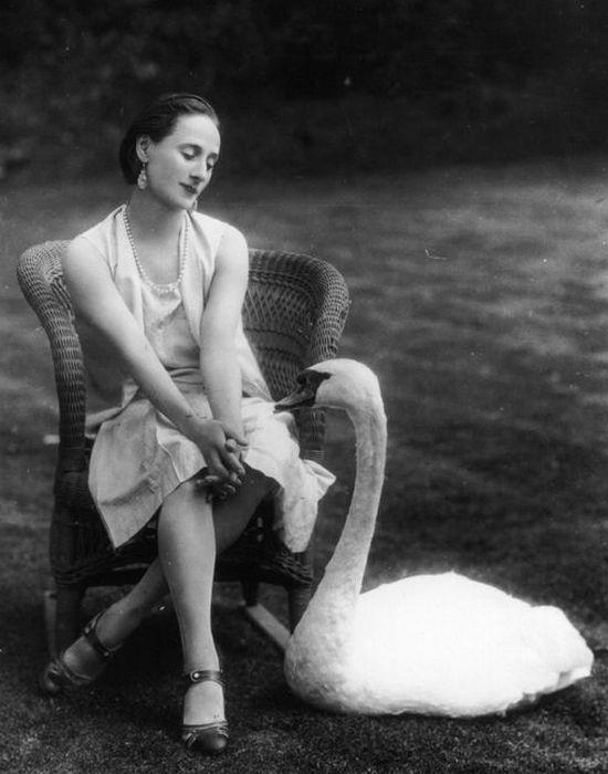 Лебедь Джек у ног балерины.