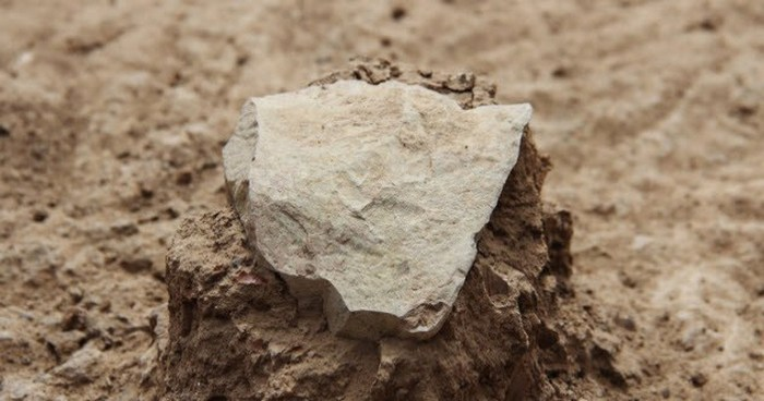 Древнейшие каменные орудия