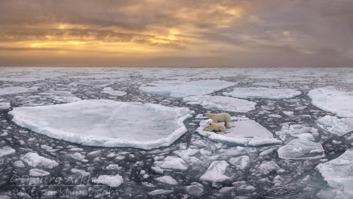 Арктический пейзаж.