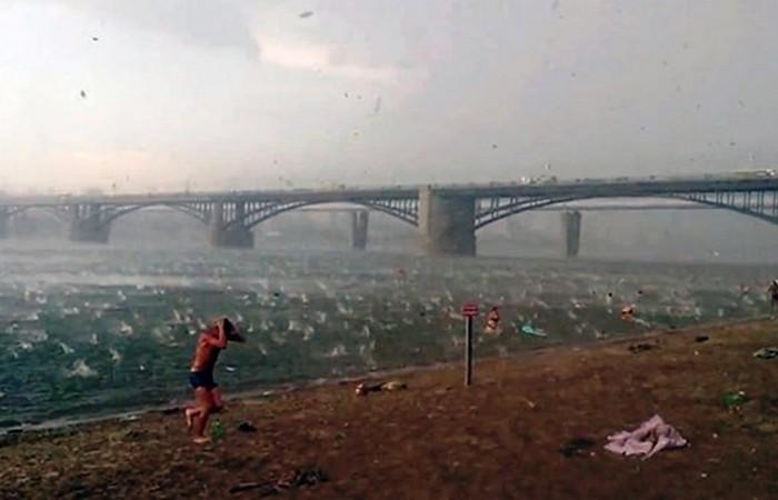 Пляж Новосибирска.