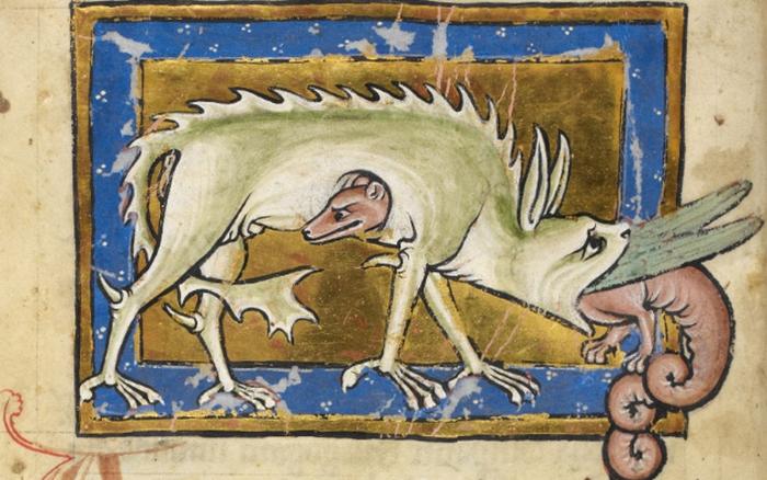 Нильская гидра - существо, наводящее ужас на крокодилов.