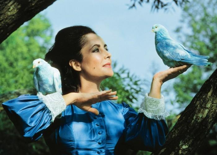 Кадр из фильма «Синяя птица».
