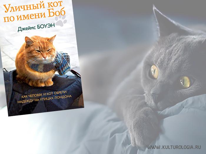 Уличный кот по имени Боб. Джеймс Боуэн.