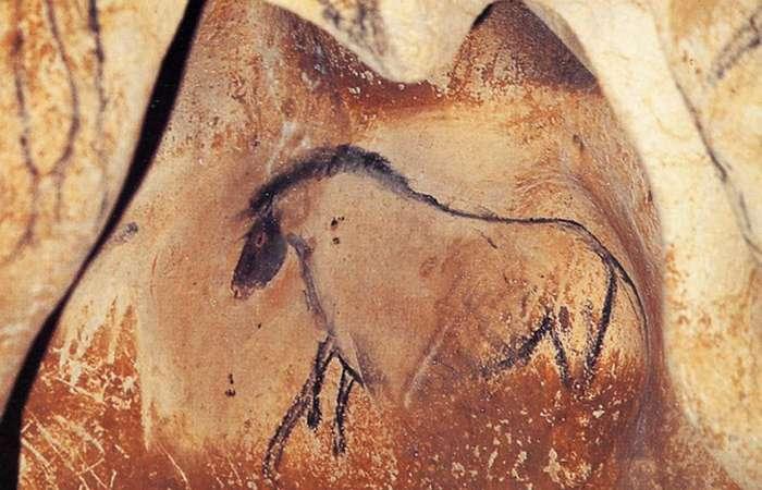 Наскальная живопись: пещера Шове.