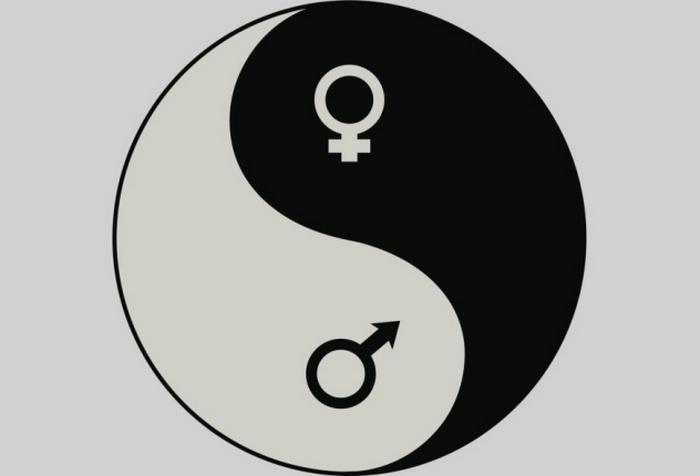 Дуотеизм, битеизм или дуализм.