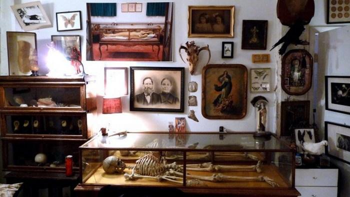 Библиотека и музей патологической анатомии, Бруклин, Нью-Йорк.