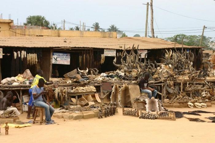 Рынок магии Акодессева, Ломе, Того.