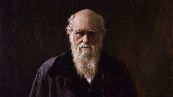 Автор теории эволюции Чарльз Дарвин.