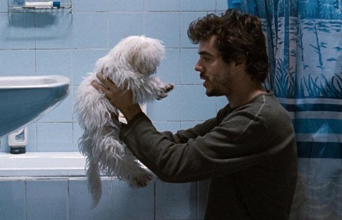 Кадр из фильма «Глухие стены»./фото: kinomania.ru