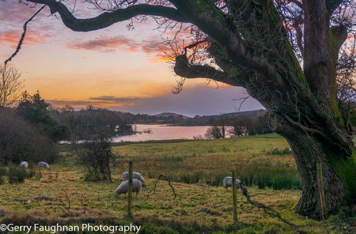 Идеалистический ирландский пейзаж. \ Фото: @gerryfaughnan