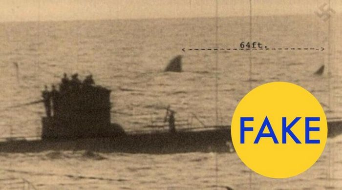 Акула мегалодон рядом с немецкой подводной лодкой в 1940.