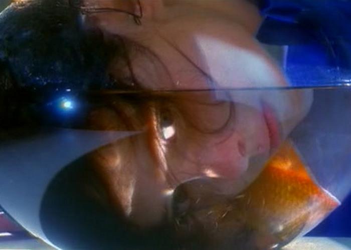 Кадр из фильма «Дельфины»./ Фото: xorosho.com