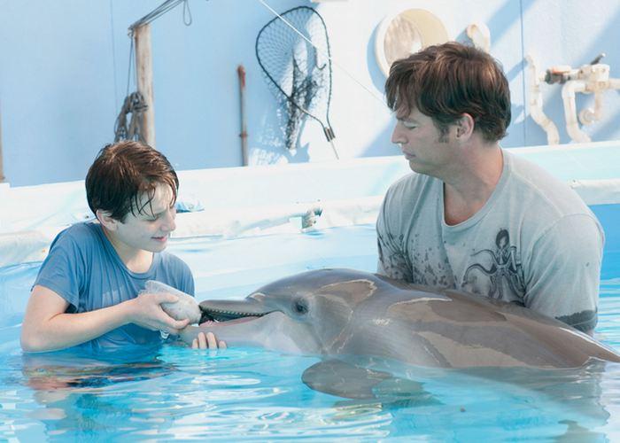 Кадр из фильма «История дельфина»./ Фото: tv.pgtrk.ru