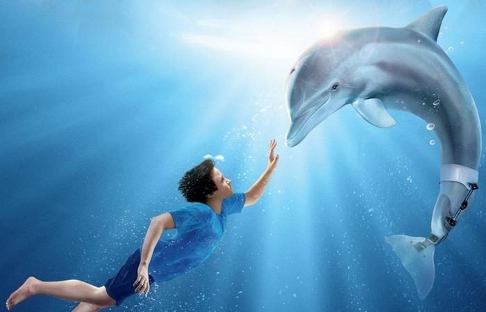 Фильм «История дельфина», режиссер Чарльз Мартин Смит./ Фото: kinopediya.ru