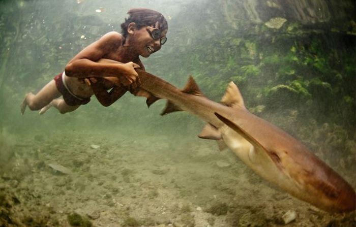 Детская площадка: аттракцион Рыбка-покатайка.