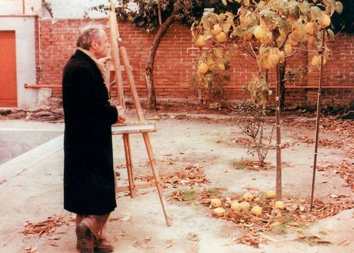 Кадр из фильма «Солнце в листве айвового дерева»./фото: kinozon.tv