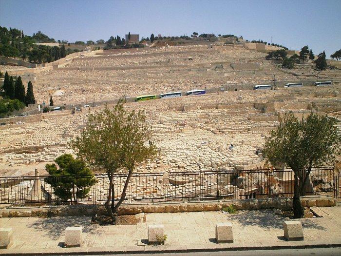 Елеонская гора сегодня. В древности она была усажена маслинами.