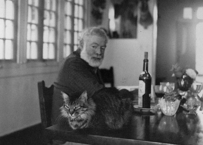 Эрнест Хемингуэй и его кот в усадьбе Финка Вихия на Кубе.