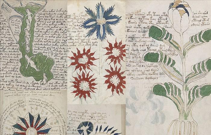 Малоизвестная тайна: манускрипт Войнича.
