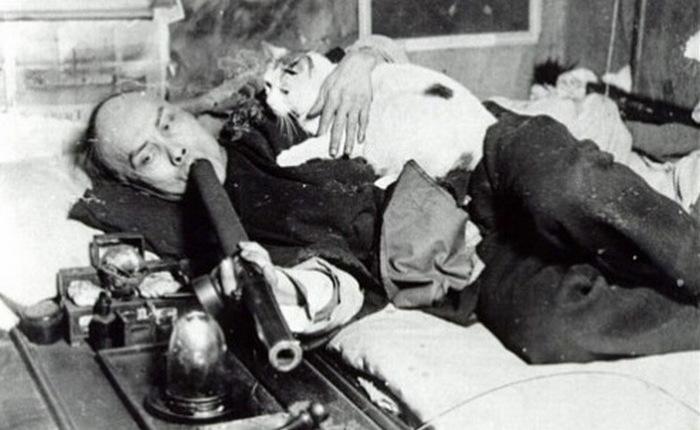 Фотография китайца, который курит опиум и гладит кошку, была очень популярной открыткой в Сан-Франциско.
