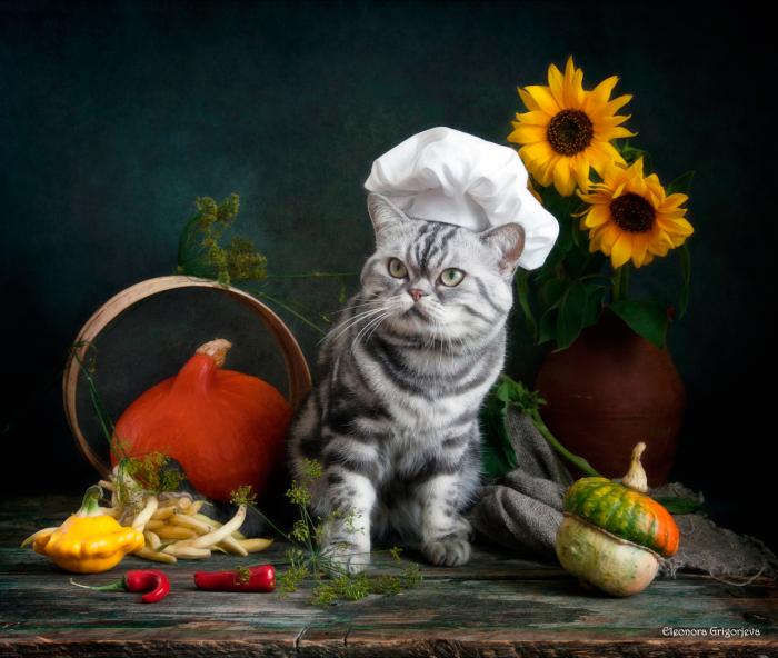 Шеф-повар. / Фото: Элеонора Григорьева.